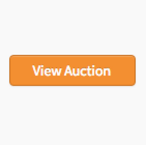 Hibachi Buffet Liquidation Auction