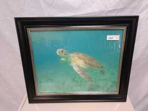 21 BY 24 FRAMED ARTWORK, BEAUTIFUL MAGNIFICENT OCEAN TORTOISE