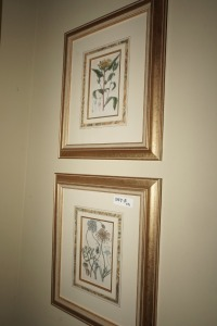 PAIR OF CLASSIC FRAMED AND MATTED FLORAL ART PRINTS - DIN