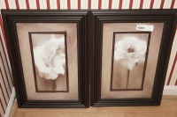 PAIR OF NICELY FRAMED AND MATTED FLORAL ART PRINTS - FOY