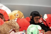 TUB FILLED WITH BEANIE BABIES - LIV - 4
