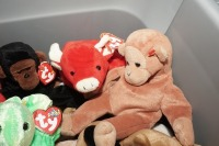 TUB FILLED WITH BEANIE BABIES - LIV - 5