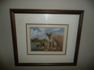 NICELY FRAMED YELLOW LAB AND DUCKS ANDREW CHAPMAN PRINT