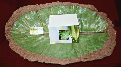 GORGEOUS, LARGE HANDCRAFTED LEAF BOWL 27X15  RETAIL VALUE $95 - DONATED BY BRENDA BURKEY