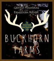 BUCKHORN FARMS GEORGIA MOUNTAIN EQUESTRIAN GET-AWAY FOR 2 NIGHTS CABIN STAY $500 VALUE - DONATED BY DAVID PRIM