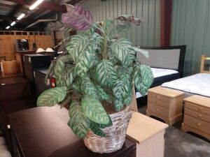ARTIFICIAL PLANT IN WOVEN BASKET, APPROXIMATELY 34-IN TALL