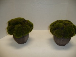 FLORAL / MOSS DECORATIVE TABLE TOP DECORATIONS