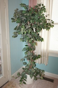 FAUX FICUS TREE WITH LIGHTS - LR